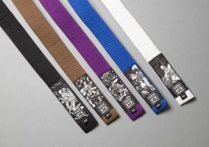 Which BJJ belt is the hardest to get?